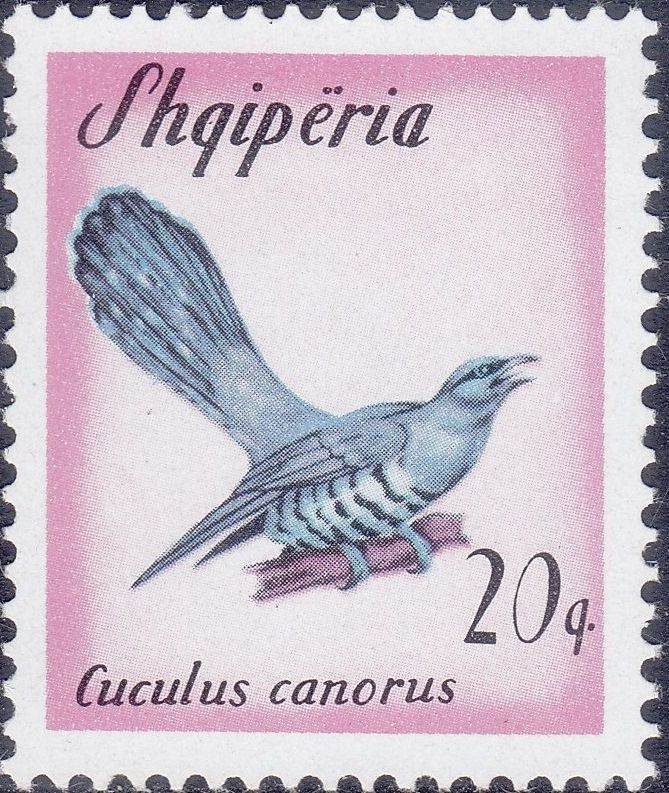 Albania 1965 Migratory Birds b.jpg