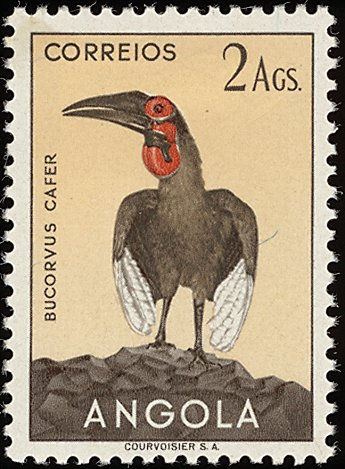 Angola 1951 Birds from Angola h.jpg