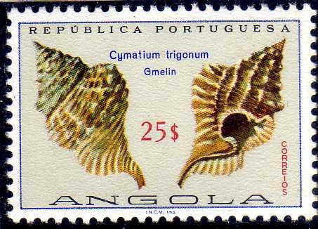 Angola 1974 Sea Shells p.jpg