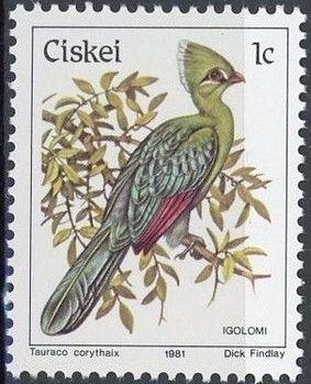 Ciskei 1981 Definitive - Birds