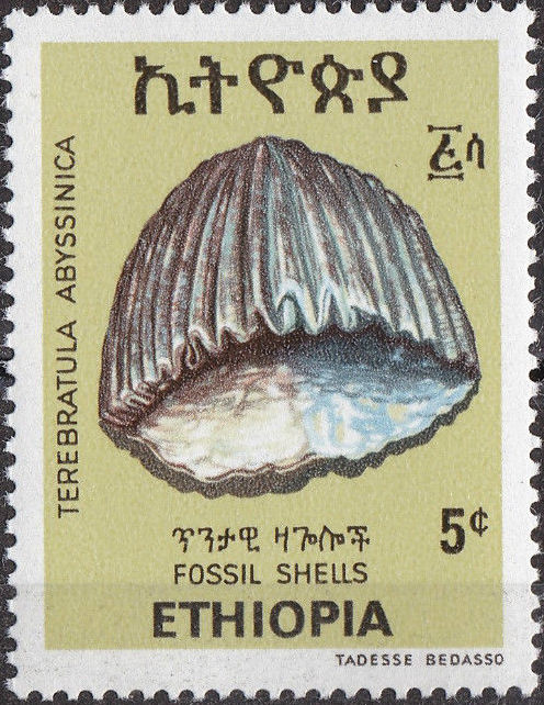 Ethiopia 1977 Fossil Shells