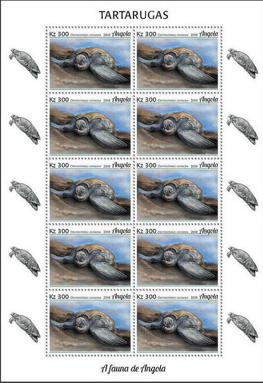 Angola 2018 Wildlife of Angola - Turtles Sc.jpg