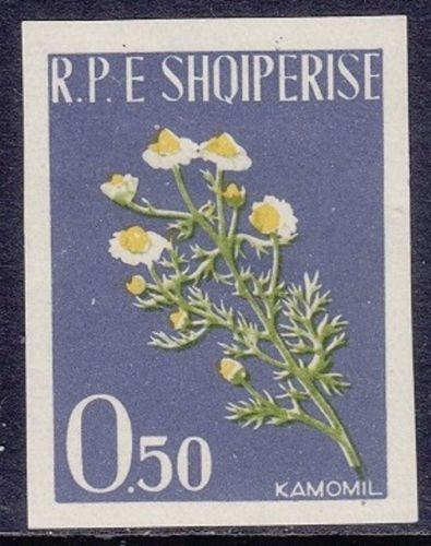 Albania 1962 Medicinal Plants d.jpg