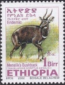 Ethiopia 2002 Menelik's Bushbuck t.jpg
