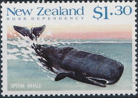 New Zealand 1988 Whales of the Southern Oceans f.jpg