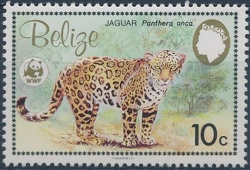 Belize 1983 WWF - Jaguar b.jpg