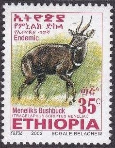 Ethiopia 2002 Menelik's Bushbuck g.jpg