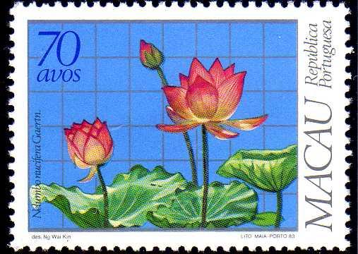 Macao 1983 Local Medicinal Plants d.jpg