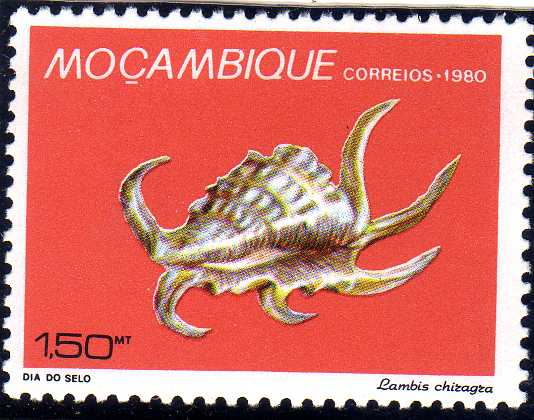 Mozambique 1980 Stamp Day - Maritime Shells of Mozambique a.jpg