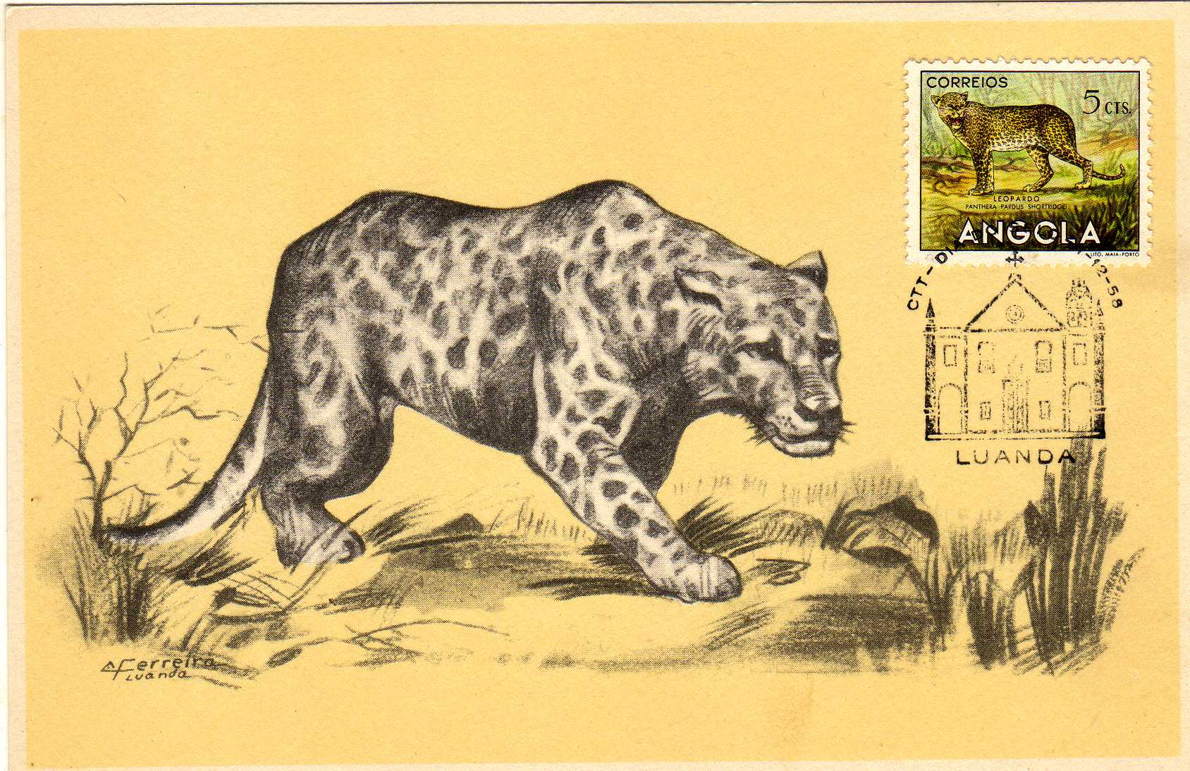Angola 1953 Animals from Angola u.jpg