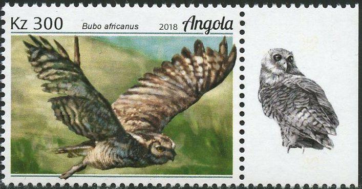 Angola 2018 Wildlife of Angola - Owls d.jpg