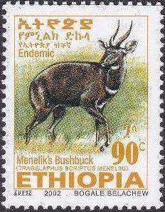 Ethiopia 2002 Menelik's Bushbuck r.jpg