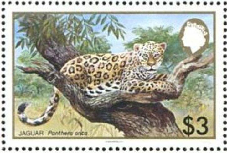 Belize 1983 WWF - Jaguar e.jpg