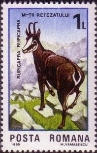 Romania 1985 Retezat National Park, 50th Anniversary b.jpg