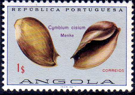 Angola 1974 Sea Shells e.jpg