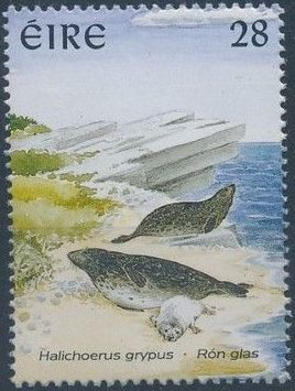 Ireland 1997 Marine Mammals a.jpg