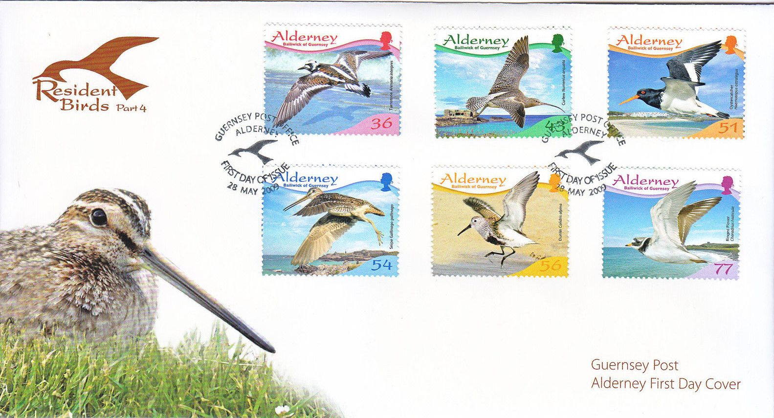 Alderney 2009 Resident Birds Part 4 (Waders) h.jpg