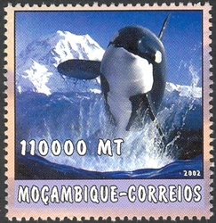 Mozambique 2002 The World of the Sea - Whales 1 g.jpg