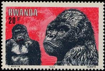 Rwanda 1983 Mountain Gorilla e.jpg