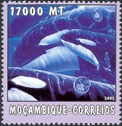 Mozambique 2002 The World of the Sea - Whales 1 b.jpg