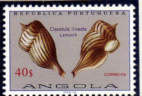 Angola 1974 Sea Shells s.jpg
