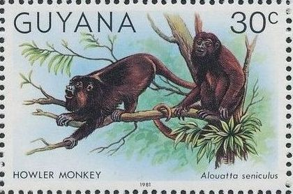 Guyana 1981 Wildlife b.jpg