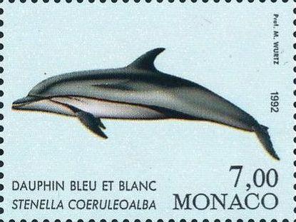 Monaco 1992 Musée Océanographique - Cétacés de la Méditerranée (1st Group) d.jpg