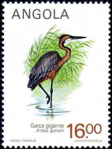 Angola 1984 Local Birds c.jpg