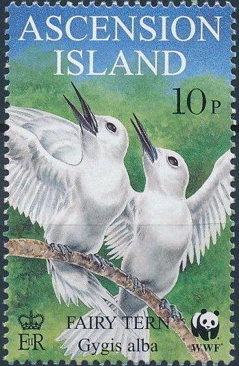 Ascension 1999 WWF Fairy Tern