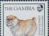 Gambia 1994 Monkeys