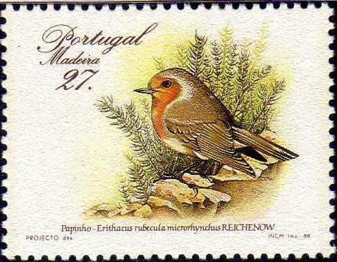 Madeira 1988 Birds from Madeira Island