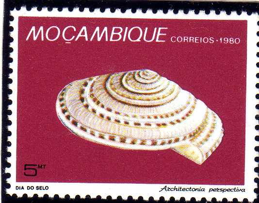 Mozambique 1980 Stamp Day - Maritime Shells of Mozambique e.jpg