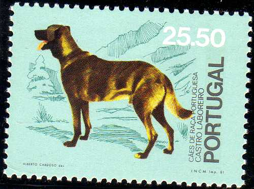 Portugal 1981 50th anniversary of the Portuguese Kennel Club e.jpg