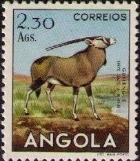 Angola 1953 Animals from Angola j.jpg