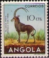 Angola 1953 Animals from Angola c.jpg