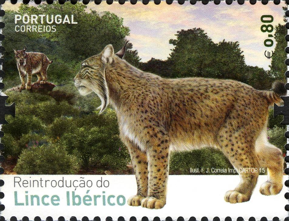 Portugal 2015 Reintroducing the Iberian Lynx into Portugal d.jpg