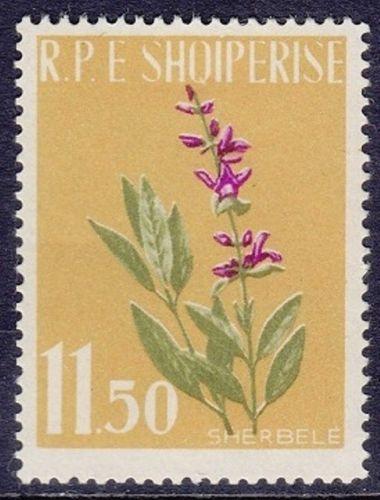 Albania 1962 Medicinal Plants c.jpg