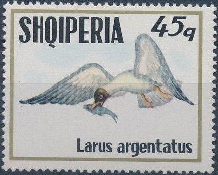 Albania 1973 Sea Birds e.jpg