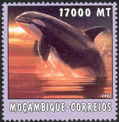 Mozambique 2002 The World of the Sea - Whales 1 f.jpg