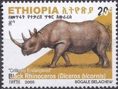 Ethiopia 2005 Black Rhinoceros d.jpg
