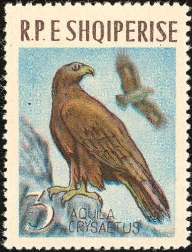 Albania 1963 Birds b.jpg