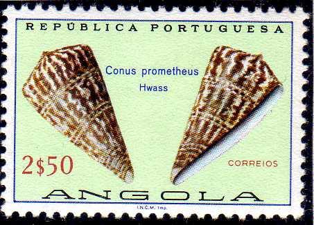 Angola 1974 Sea Shells h.jpg