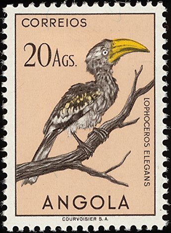 Angola 1951 Birds from Angola t.jpg