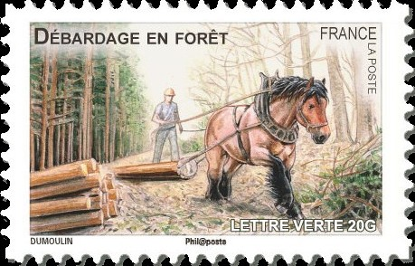 France 2013 Draft Horses of our Regions l.jpg