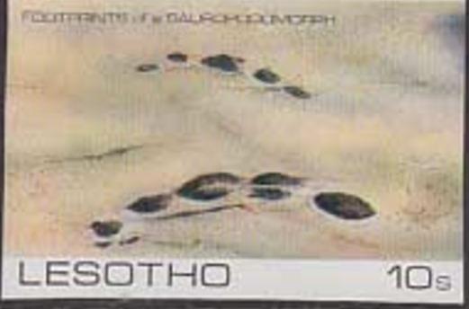 Lesotho 1984 Dinosaurs Footprints d.jpg