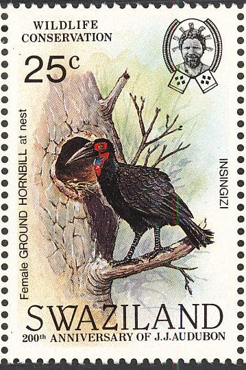 Swaziland 1985 WWF Southern Ground Hornbill (Audubon birth bicentenary) e.jpg