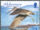 Alderney 2009 Resident Birds Part 4 (Waders) d.jpg