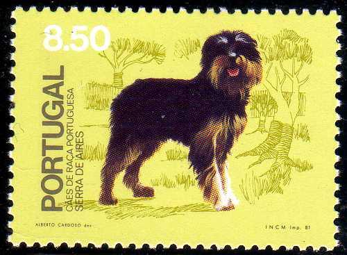 Portugal 1981 50th anniversary of the Portuguese Kennel Club b.jpg