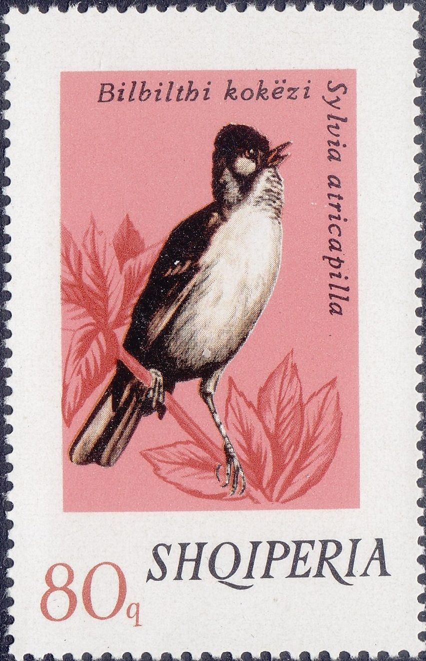 Albania 1974 Song Birds f.jpg