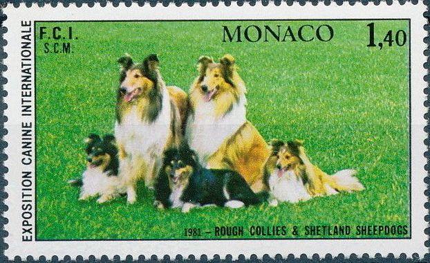 Monaco 1981 International Dog Show, Monte Carlo